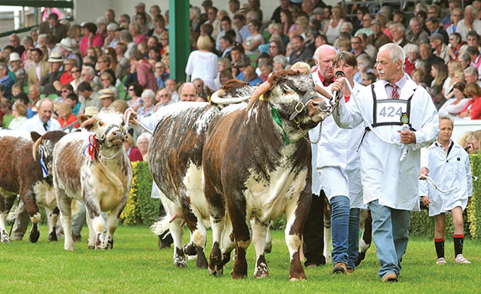 160th Great Yorkshire Show